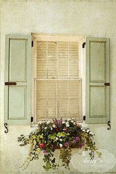 Beautiful soft green shuttered window and window flower box from Charleston, SC. Professionally printed upon order. My photographs are professionally printed with archival inks on premium acid-free pa