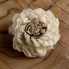 Sola Shell Flowers Two Tone (12 flowers /pkg) $6 pkg/ 3 for $5 pkg