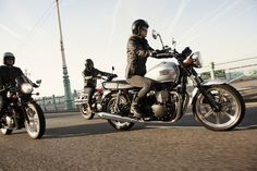 10+ bästa bilderna på Hundväska i 2020 | motorcykel
