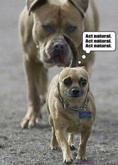 just act natural ! haha