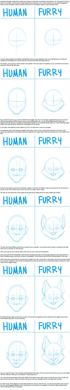 How to turn a human into a furry drawing tutorial. Drawing Practice, Drawing Skills, Drawing Techniques, Drawing Tips, Drawing Reference, Drawing Sketches, My Drawings, Manga Drawing, Furry Drawing