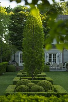 37 Flower Landscape Design Ideas to have a Colorful Garden - Gorgeous gardens - Modern Landscape Design, Garden Landscape Design, Modern Landscaping, Backyard Landscaping, Landscaping Design, Boxwood Garden, Topiary Garden, Topiaries, Boxwood Hedge