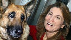 Le Code de l'animal, un nouvel outil juridique pour défendre les bêtes