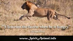 Inspirational Lion Quotes Do I believe in arbitration? But not in arbitration between the lion and the lamb, in which the lamb is in the morning found inside the Lion Spirit Animal, Your Spirit Animal, Inspirational Lion Quotes, Between The Lions, Panther, Kangaroo, Tattoo Quotes, Horses, Woodburning