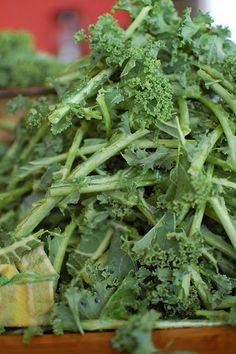 how to freeze kale.......this is a great way to use up all the rest of our garden kale! We will freeze it for soups and smoothies. Love!