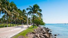 Explore the Cool and Cultural Miami (Vayable)