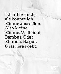 ich fühle mich als könnte ich bäume ausreißen. also kleine bäume. vielleicht bambus. oder blumen. na gut, gras. gras geht. #humor #worte