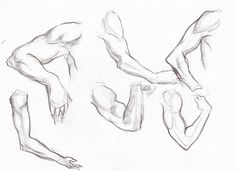 Human Anatomy: Great Human Anatomy Drawing Practice 20 With Additional Human Anatomy Pictures With Human Anatomy Drawing Practice: Human Anatomy Drawing Practice