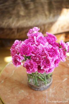 Jeden Tag frische Schnittblumen - Farbtuper im Biohotel Mas Salagros, nahe Barcelona Barcelona, Das Hotel, Still Life, Flower Arrangements, Glass Vase, Hotels, Paintings, Flowers, Decor