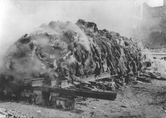 Hundreds of thousands of Germans were torched in a real holocaust, or ...