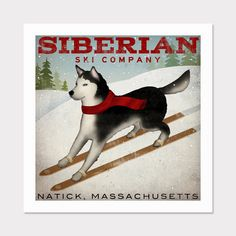 SIBERIAN Husky Dog Premium Archival Giclee PRINT 12 X 12 inches SIGNED Siberian. $36.00, via Etsy.