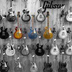 GIBSON WALL  #guitar #guitarra #guitarist #guitars #guitarporn #guitarrasexclusivas #txirula #txirulamusik #gibsoncustom #gibson #ofertagibson #lespaul #gibson2015 @gibsonguitar #goldtop