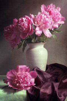 Flowers Photography Still Life 60 Ideas photography flowers 617485798890062876 Exotic Flowers, Pink Flowers, Beautiful Flowers, Pink Peonies, Beautiful Pictures, Flower Vases, Flower Art, Flower Arrangements, Oil Painting Flowers