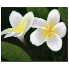 @Overstock - Title: Hawaiian Lei FlowersProduct Type: Gallery-wrapped Canvas ArtImage dimensions: 26 inches high x 32 inches widehttp://www.overstock.com/Home-Garden/Hawaiian-Lei-Flowers-Gallery-wrapped-Canvas-Art/5672421/product.html?CID=214117 $72.99