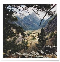 San Juan Forest - Kevin Russ - Premium Poster