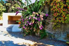 On the other side of this wall covered with climbing plants and flowers, is the road leading to the Castle of Tomar, the Christ Convent and the Chapel of Senhora da Conceição
