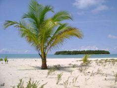 Cayo Albuquerque  San Andres Isla Beach, Water, Outdoor, Colombia, Gripe Water, Outdoors, The Beach, Beaches, Outdoor Games