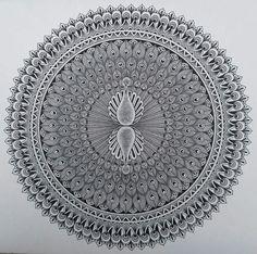 Peacock Painting, Peacock Art, Madhubani Art, Madhubani Painting, Drawing Stencils, Pretty Art, Zentangle, Line Art, Decorative Plates