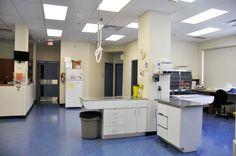 Triage Area Table, Furniture, Home Decor, Interior Design, Home Interior Design, Desk, Tabletop, Arredamento, Desks