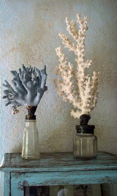 Explore Something To See's photos on Flickr. Sea, coral, DIY, coastal, ocean. Indigo Sunshine on Pinterest
