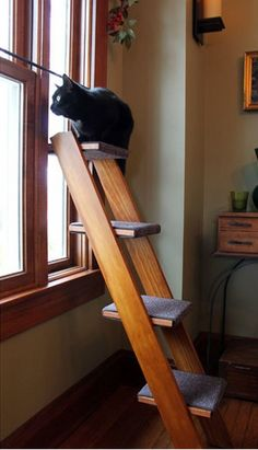 Cats Toys Ideas - This ladder for your cat to perch on, which is also very aesthetically pleasing. - Ideal toys for small cats Cat Club, Cat Hacks, Cat Towers, Ideal Toys, Cat Shelves, Photo Chat, Cat Enclosure, Cat Room, Pet Furniture