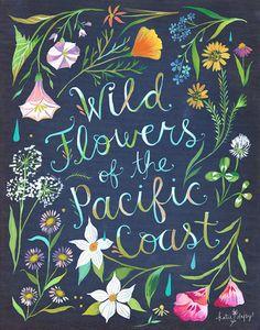 Wildblumen im Pazifik Küste Kunstdruck von thewheatfield auf Etsy