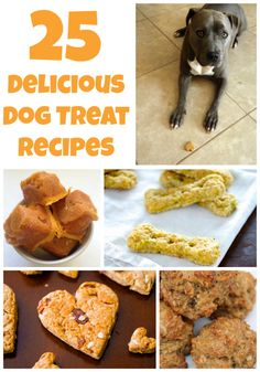 25 Delicious Homemade Dog Treat Recipes. Especially going to try the Cheddar Blueberry Biscuits but probably omitting the blueberries