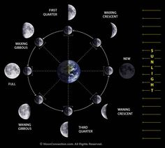Image result for moon phases pictures