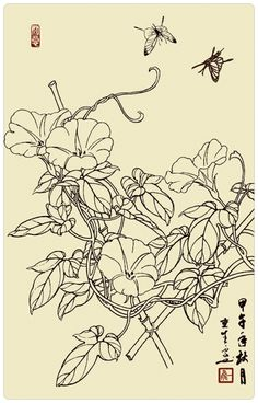 """Photo from album """"Вьюнок"""" on Yandex. Flower Sketches, Drawing Sketches, Art Drawings, Flower Drawings, Sharpie Doodles, Sharpie Art, Sketch Painting, Painting & Drawing, Vine Drawing"""