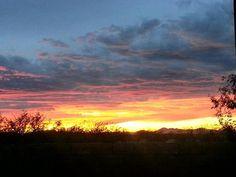 Tucson, AZ - Taken by: Laurie J. White Berryman