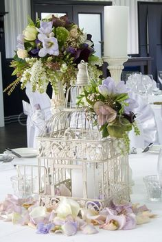 Birdcage French White Square Large