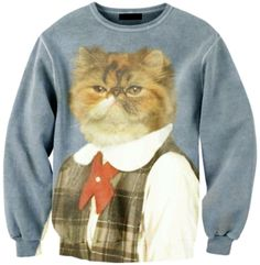 This Cat Sweater ... | 21 Animal Accessories That You Urgently Need In Your Life