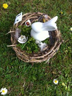 Hasen-Nest