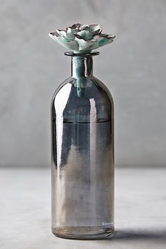 Succulent-Topped Bottle #anthropologie moss $22