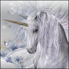 Beautiful Unicorn                                                                                                                                                      Más