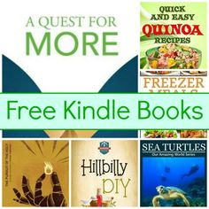 Free Kindle Book List: A Quest For More, Sea Turtles, Quinoa Recipes, and More