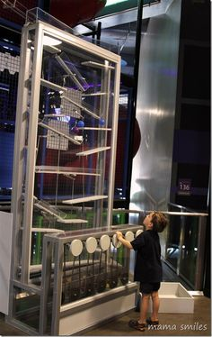 Great places to take your kids: the Discovery Childrens Museum Las Vegas