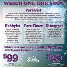 Are you a Careerist? Are you a Hobbyist? Are you a Part Timer? Or Are you a Kitnapper? Join Scentsy! Follow me Or check out my website at www.MizJgutz.Scentsy.us
