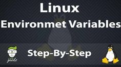 Learn About Linux Environment Variables Local And Global Variables And How To Persist Them And How To Set variable Arrays And use Them In Bash Scripting