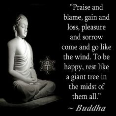 """""""Praise and blame, gain and loss, pleasure and sorrow come and go like the wind. To be happy, rest like a giant tree in the midst of them all."""" ~ Buddha"""