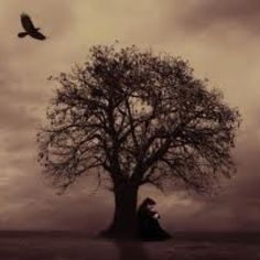 This is me when I am sad. The raven always present to love and protect me when darkness has befallen.