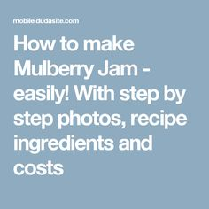 How to make Mulberry Jam - easily! With step by step photos, recipe ingredients and costs Cantaloupe Recipes, Radish Recipes, Freezing Strawberries, Frozen Strawberries, Mulberry Jam, Mixed Berry Jam, Mulberry Recipes, Spagetti Recipe, Thermomix