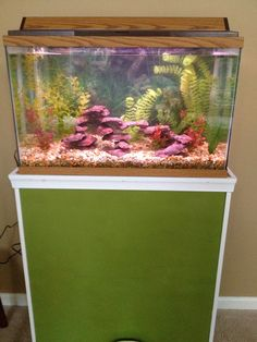 Kitchen Island Fish Tank pingail laflamme on fish & fish tanks | pinterest