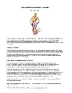 El nervio ciático es el más largo y grande del cuerpo, y mide tres cuartos de pulgada de diámetro. El nervio ciático se origina en el plexo sacro: una red de nervios en la parte inferior de la espalda (columna lumbosacra). El nervio ciático y sus ramas nerviosas permiten el movimiento y las sensaciones (funciones motoras y sensoriales) en el muslo, la rodilla, la pantorrilla, el tobillo, los pies y los dedos.