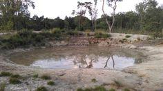 Water bij 't Loonsche Land