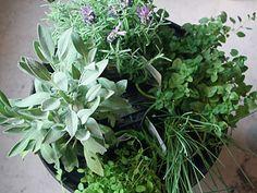 Fantastic idea... re-purposing an old grill as an herb garden planter