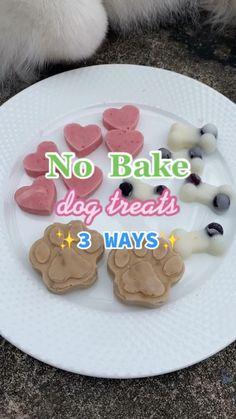 No Bake Dog Treats, Puppy Treats, Diy Dog Treats, Healthy Dog Treats, Homade Dog Treats, Frozen Dog Treats, Homemade Rabbit Treats, Summer Dog Treats, Peanut Butter Dog Treats