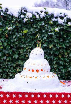 Taart van sneeuw- Voeder taart voor vogels- http://www.mylucie.com- bird- snow