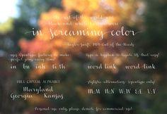 Check Out This Beautiful FREE Font Collection - Nita Sambuco