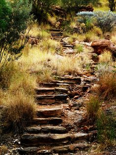 Meyer Hill, Alice Springs, Australia 2011 by Ashley J. Palmer, via Flickr Alice Springs, Beautiful Places, Country Roads, Around The Worlds, Australia, Explore, Exploring